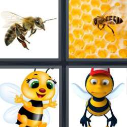 Solutions-4-images-1-mot-ABEILLE