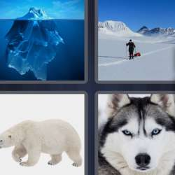 Solutions-4-images-1-mot-ARCTIQUE