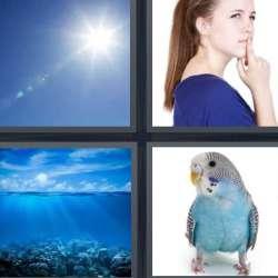 Solutions-4-images-1-mot-BLEU