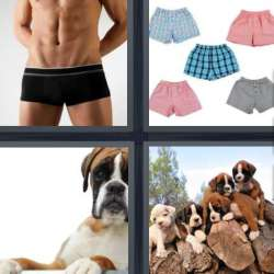 Solutions-4-images-1-mot-BOXER