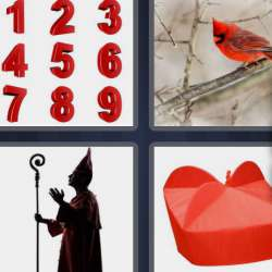 Solutions-4-images-1-mot-CARDINAL