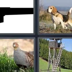 Solutions-4-images-1-mot-CHASSEUR