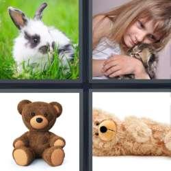 Solutions-4-images-1-mot-CHOU