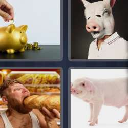 Solutions-4-images-1-mot-COCHON