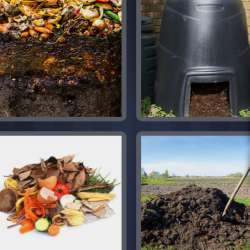 Solutions-4-images-1-mot-COMPOST