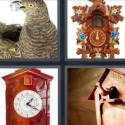 Solutions-4-images-1-mot-COUCOU