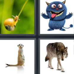 Solutions-4-images-1-mot-CREATURE