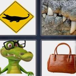 Solutions-4-images-1-mot-CROCODILE