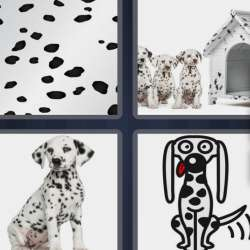Solutions-4-images-1-mot-DALMATIEN