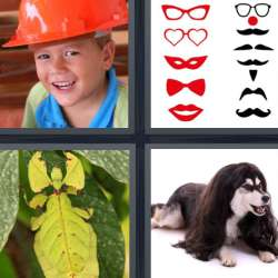 Solutions-4-images-1-mot-DEGUISE