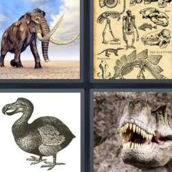 Solutions-4-images-1-mot-DISPARU