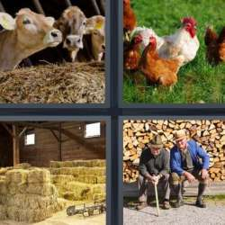 Solutions-4-images-1-mot-FERME