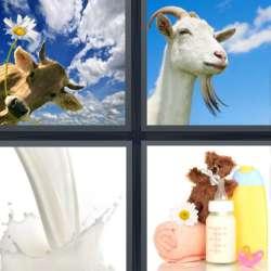 Solutions-4-images-1-mot-LAIT