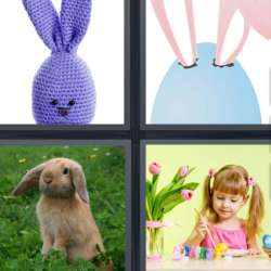 Solutions-4-images-1-mot-LAPIN