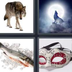 Solutions-4-images-1-mot-LOUP
