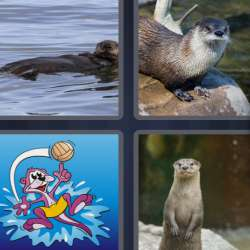 Solutions-4-images-1-mot-LOUTRE