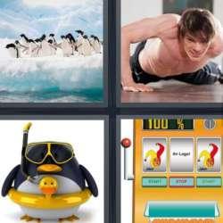 Solutions-4-images-1-mot-MANCHOT