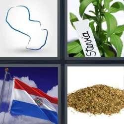 Solutions-4-images-1-mot-PARAGUAY