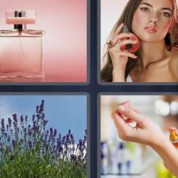 Solutions-4-images-1-mot-PARFUM