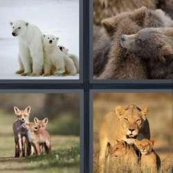 Solutions-4-images-1-mot-PETITS