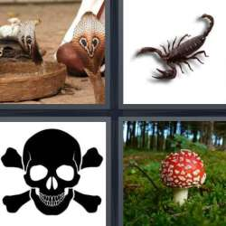 Solutions-4-images-1-mot-POISON