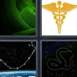 Solutions-4-images-1-mot-SERPENT
