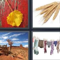 Solutions-4-images-1-mot-Sec