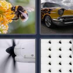 Solutions-4-images-1-mot-VROMBIR