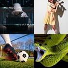 Solutions-4-images-1-mot-ATTAQUE