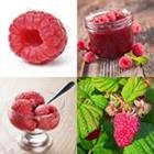 Solutions-4-images-1-mot-FRAMBOISE